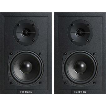 Kurzweil KS40A monitor set