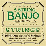 D'Addario J69B Phosphor Bronze Ball-End 5-String Banjo