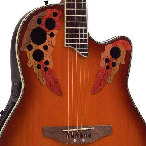 Ovation Elite Plus Celebrity - Spalted Maple | Sweetwater