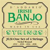 D'Addario J63i Nickel Irish Tenor Banjo 12-36