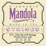D'Addario J72 Phosphor Bronze Mandola Strings 14-49
