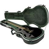 SKB 1SKB-30 Thin-line AE / Classical Deluxe Guitar Case