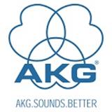 AKG Adaptor Cable 2,5 Male/3.5 Fem