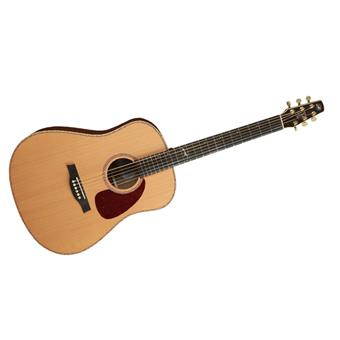 Seagull Artist Mosaic Element acoustic-electric dreadnought guitar