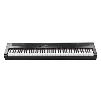 Artesia PA-88H+ black stage piano