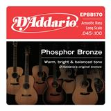 D'Addario EPBB170 Phosphor Bronze 4-String Acoustic Bass 45-100